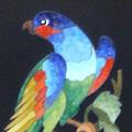 Arte Decorativa di Fiordelisi Simone: Quadri, Pappagallo variopinto