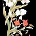 Arte Decorativa di Fiordelisi Simone: Tables, Iris et coquelicots