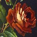 Arte Decorativa di Fiordelisi Simone: Images, Roses rouge